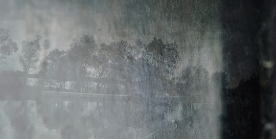 Frey_aurelia_Variations_08