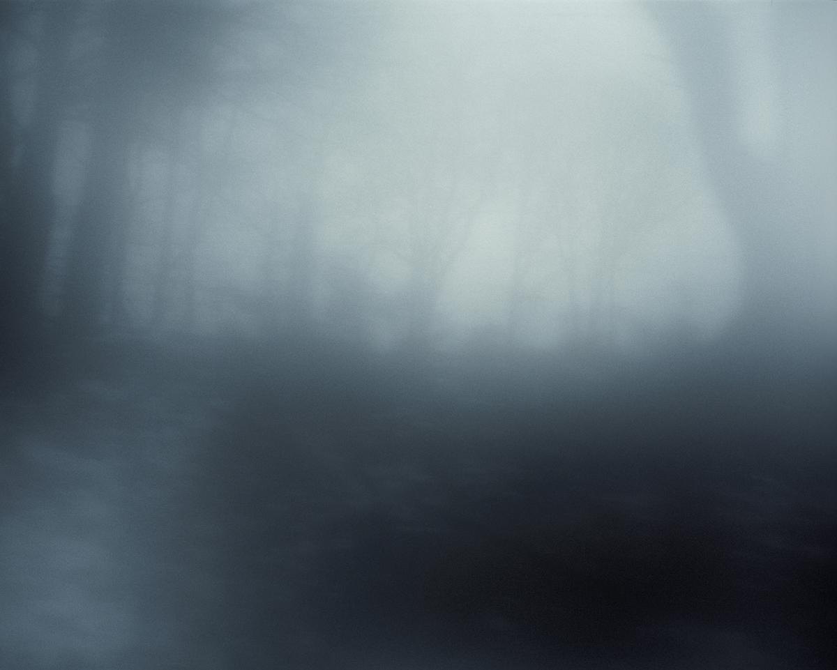 Frey_aurelia_Variations_14